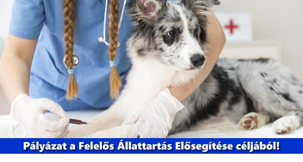 Felelős Állattartás Elősegítése pályázati lehetőség a Magyar Falu Program keretében
