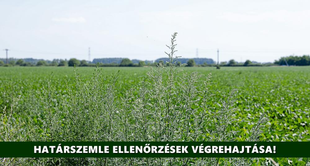 2021 évi határszemle ellenőrzés - Agrárminisztérium